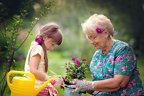 Spring Activity Recommendations for you and Your Senior Loved One - Ellijay, GA
